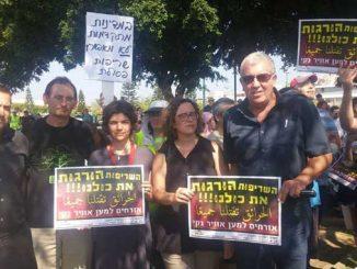 יעל כהן פארן