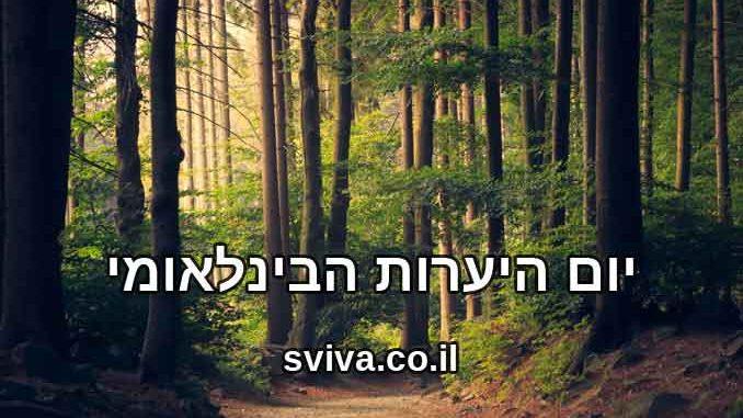 יום היערות הבינלאומי